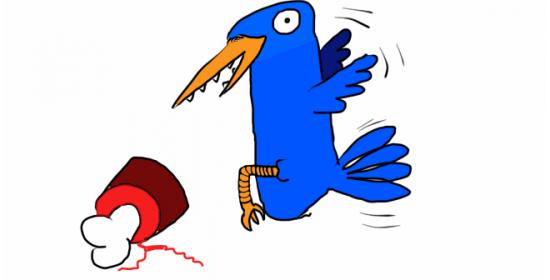 En que me afecta colibrí?